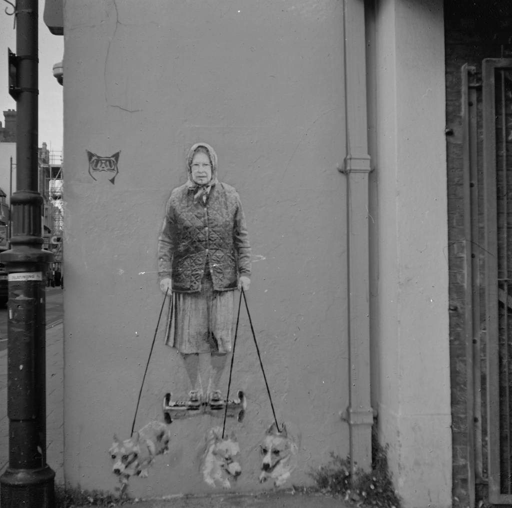 Queen and Corgies, Whitstable